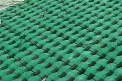 井字植草砖工程实例
